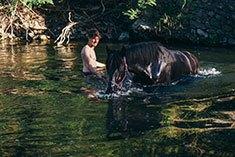 Mann und Pferd beim Baden